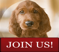 CanaDogs:Canada Dogs  Join Us link to registration page