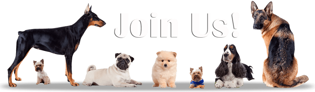 Join Us link on CanaDogs: Canadian dog breeders